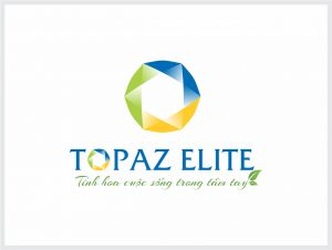 thiết kế logo bất động sản topaz elite